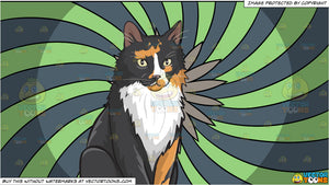 A serious looking fluffy cat and A Psychedelic Flower Background