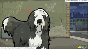 A Shaggy Bearded Collie Dog and A Dodgy Alley Background