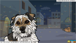 A Shaggy Dog Looking Kind and A Dark Alley At Night Background