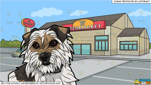 A Shaggy Dog Looking Kind and Outside A Large Supermarket Background