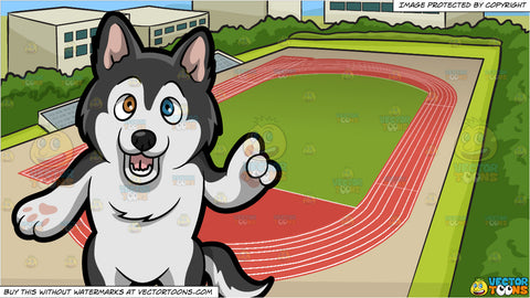A Siberian Husky Making A Point and Track And Field Background