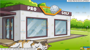 A Sleeping Calico Cat and A Country Club Golf Shop Background