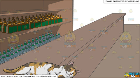A Sleeping Calico Cat and A Long Bar With Lots Of Alcohol Stocks