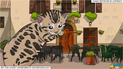 A Spotted Kitten and European Village Cafe Background