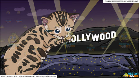 A Spotted Kitten and Hollywood Sign At The Night Background