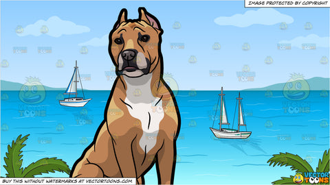 A Strong American Staffordshire Terrier Pet Dog and Sailboats Anchored Off The Shore Background