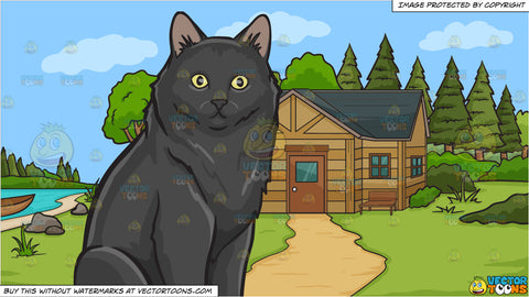 A Surprised Black Cat and A Cabin In The Woods Background