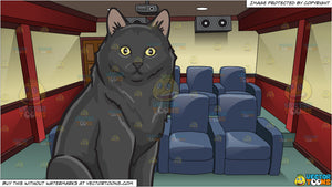 A Surprised Black Cat and Inside A Modern Home Theater