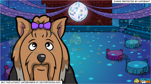 A Yorkshire Terrier With A Bow and A School Gym Set Up For Prom Background