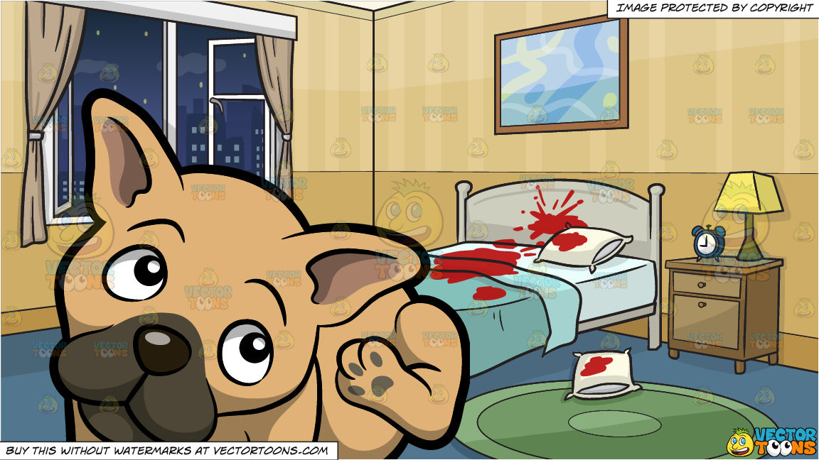 A Young French Bulldog Scratching His Ear and A Crime Scene Bedroom  Background