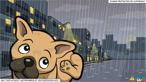 A Young French Bulldog Scratching His Ear and A Rainy Day In The City Background