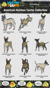 American Hairless Terrier Collection