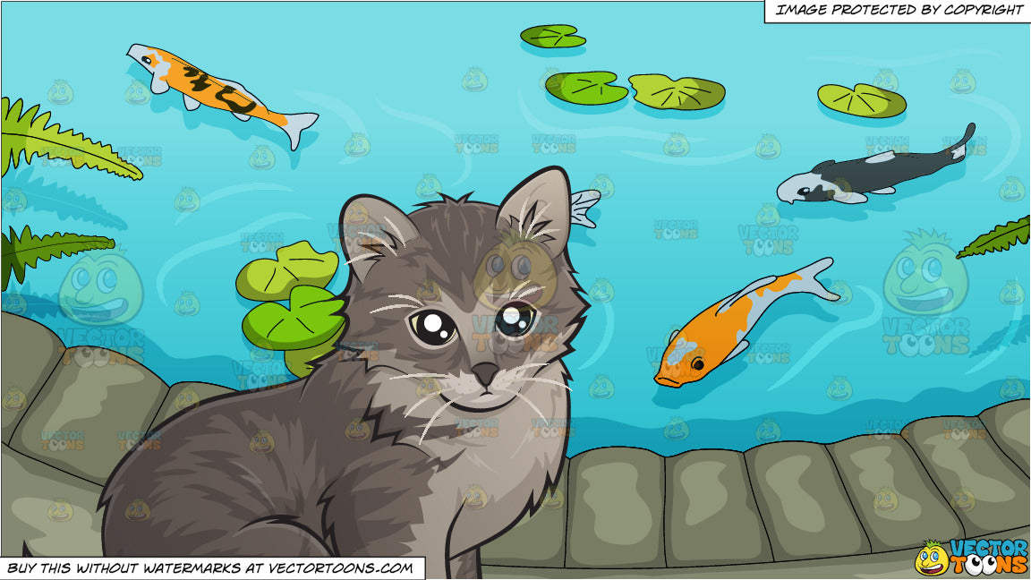 An Adorable Little Kitten and Pretty Koi Pond Background