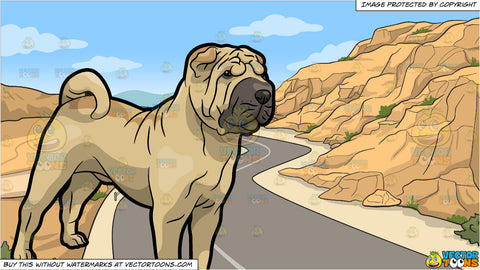 An Alert Shar Pei Dog and A Canyon Road Background