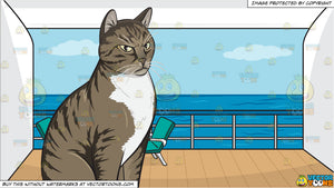 An Angry Domestic Cat and A Balcony Of A Cruise Ship State Room Background