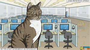 An Angry Domestic Cat and A Call Center Office Room Background