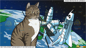 An Angry Domestic Cat and A Space Station Background