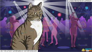 An Angry Domestic Cat and Inside A Lively Night Club