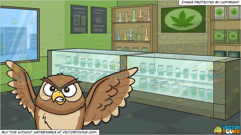 An angry night owl and Inside A Marijuana Dispensary Background