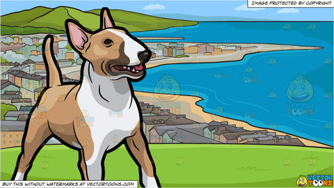 An Attentive Bull Terrier and View Of The Coastline Background