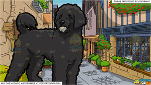 An Intrigued Portuguese Water Dog and Charming European Street Background