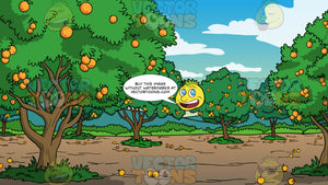 An Orange Grove Background. A plot of land filled with lush trees with orange citrus fruit growing on them, and oranges on the ground that have fallen off the trees