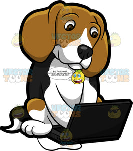 A Beagle Using The Laptop