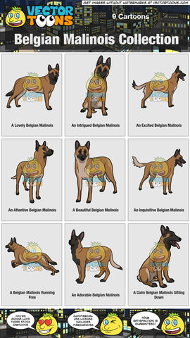 Belgian Malinois Collection