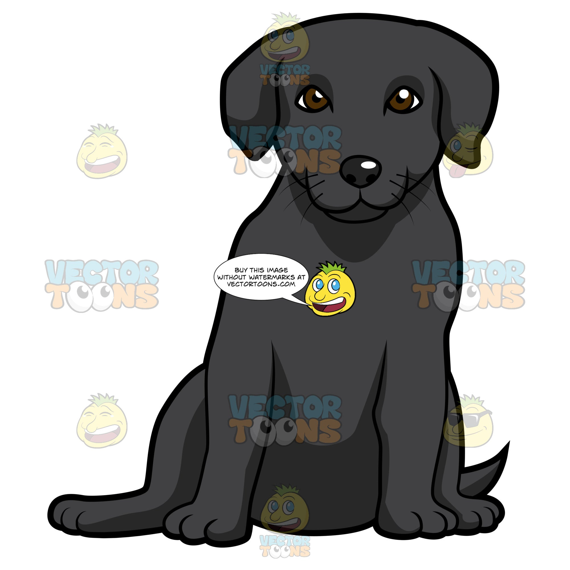 Black Labrador Puppy Sitting