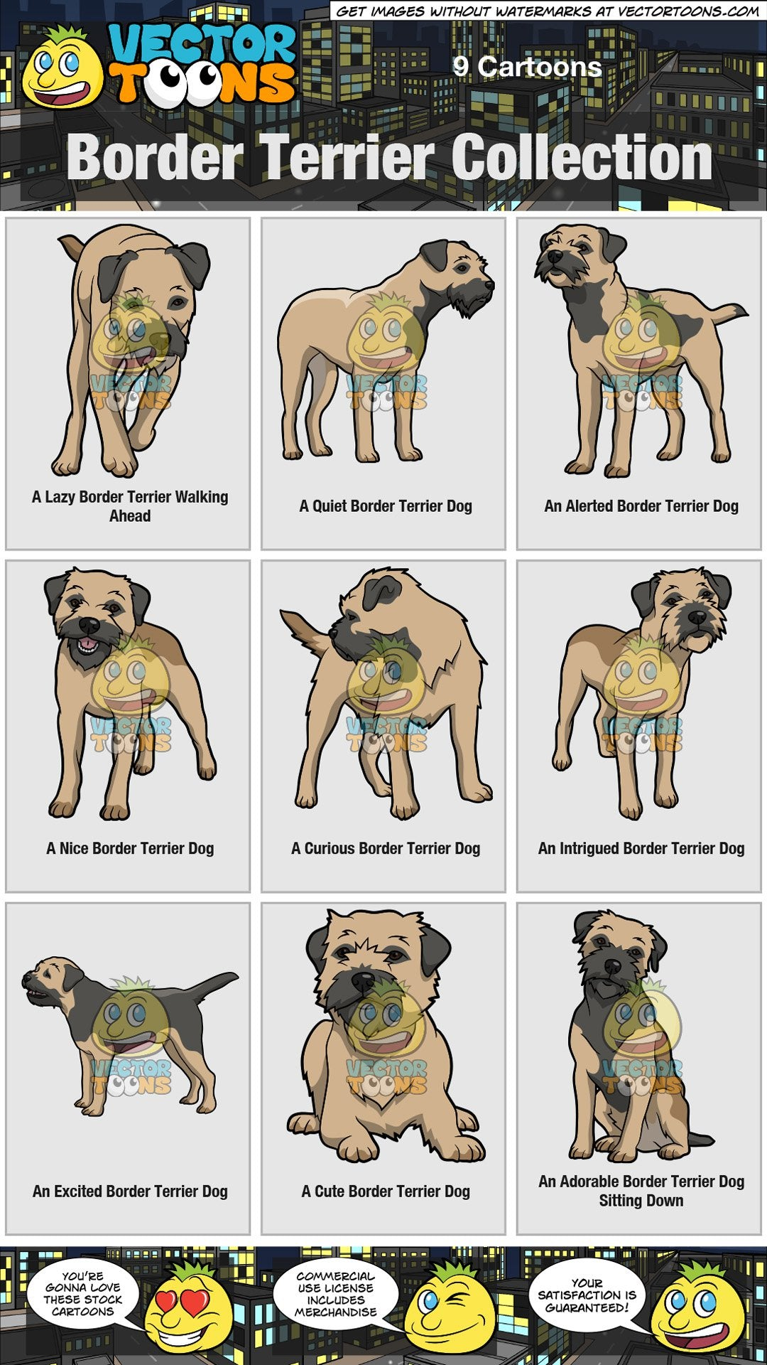 Border Terrier Collection