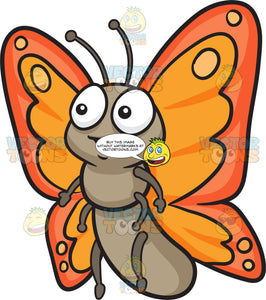 A Cute Butterfly With Two Tone Orange Wings