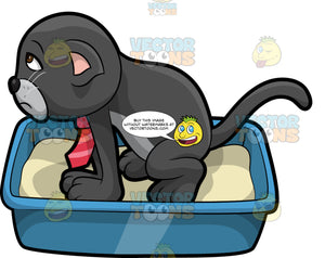 Cavity Cat Peeing In A Litter Box. A grumpy looking black cat with a gray belly, wearing a red tie, squatting in a litter box and urinating
