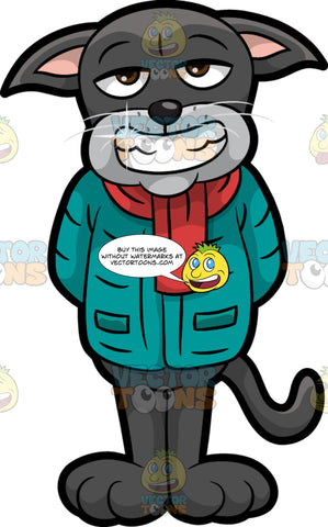 Cavity Cat Showing Off His Sparkling White Teeth. A black cat wearing a winter jacket and a red scarf, standing and grinning, showing off his freshly cleaned teeth