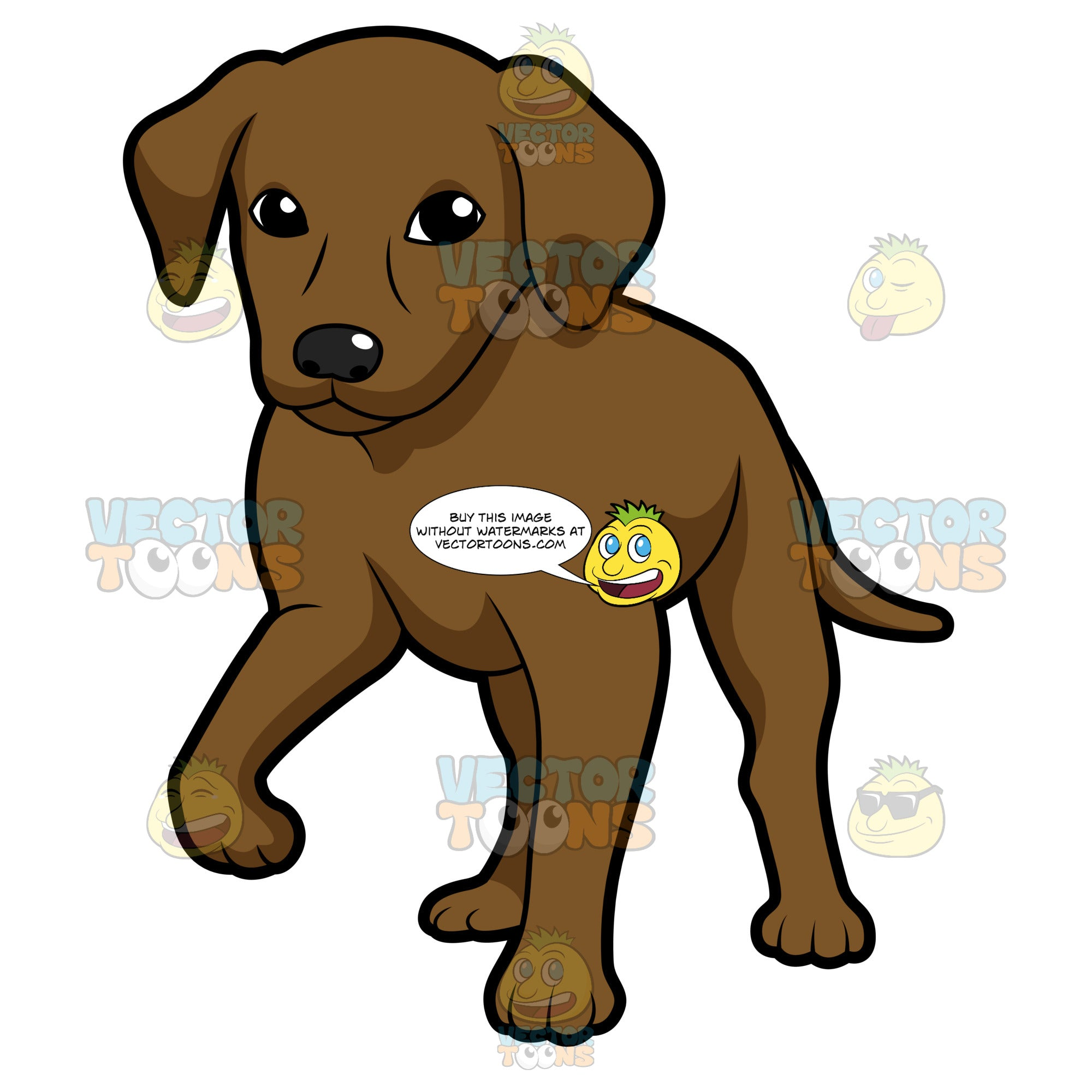 Chocolate Brown Labrador Puppy Standing With One Paw Up Clipart Cartoons By Vectortoons