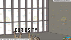 Curiosity Killed The Cat and A View From Inside The Prison Cell