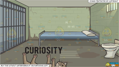 Curiosity Killed The Cat and Jail Cell Background