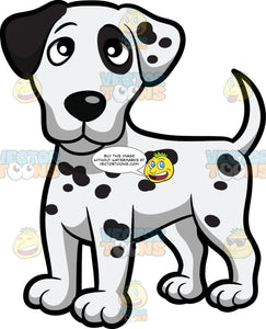 A Dalmatian Puppy Standing On All Fours
