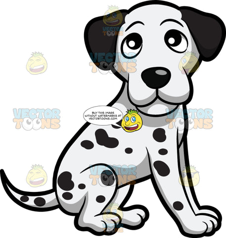 An Adorable And Cute Dalmatian Puppy