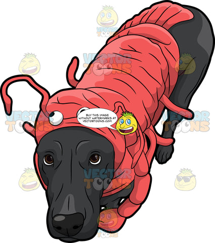 A Dog Wearing A Lobster Costume