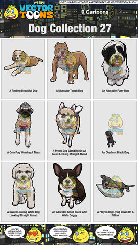 Dog Collection 27