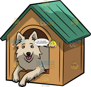 A Beautiful Dog In A Dog House