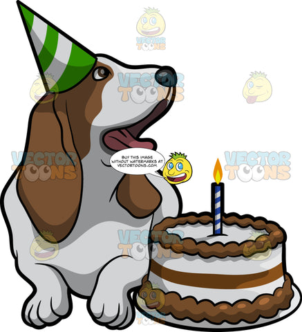 A Basset Hound Birthday Dog