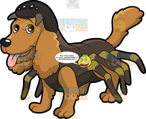 A Dog In A Spider Costume. A cute dog with fluffy brown coat and droopy ears, wearing a dark brown spider costume with multiple legs