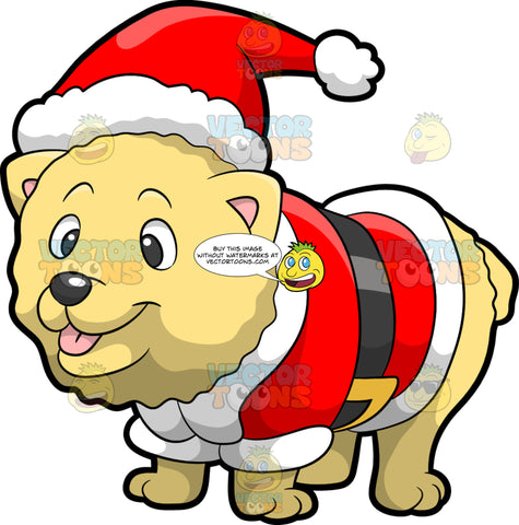 A Dog In A Santa Claus Costume. A fluffy dog with light yellow coat, smiles and shows its pink tongue while wearing an adorable red and white Santa Claus costume with a black belt