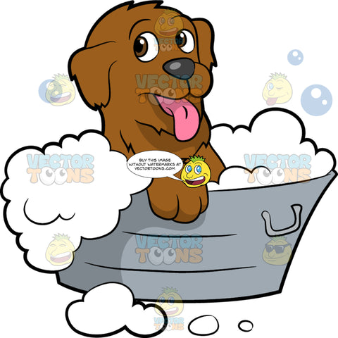 A Cute Dog Having A Bath. A dog with brown coat, droopy ears, pink tongue, dark gray nose, smiles while taking a bubble bath inside a gray basin tub