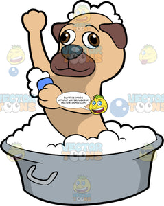 A Small Dog Getting A Bath. A small dog with beige and brown coat, dark gray nose, takes a bubble bath while scrubbing himself with a blue soap while inside a gray basin tub