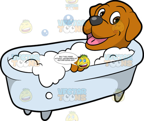 A Happy Dog Having A Bath. A happy dog with a brown coat, droopy ears, dark gray nose, pink tongue, smiles while getting a bubble bath inside a white tub