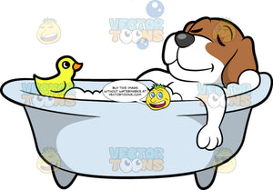 A Beagle Dog Taking A Relaxing Bath. A dog with brown and white coat, dark gray nose, shuts his eyes and smiles while relaxing, as he soaks in a bubble bath in a white tub with a yellow rubber duckie