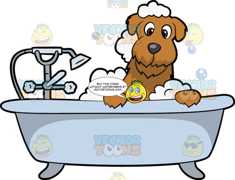 A Scruffy Dog Taking A Bubble Bath. A cute dog with shaggy brown coat, dark gray nose, smiles while having a bubble bath in a light bluish gray tub with a shower head and faucet