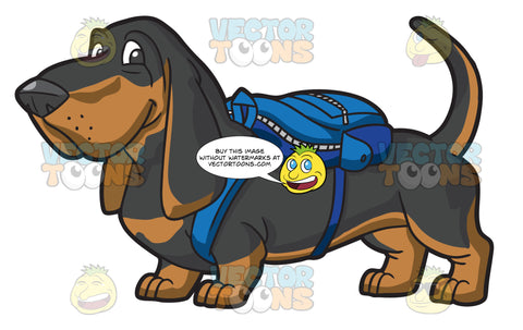 A Short Dog With A Backpack
